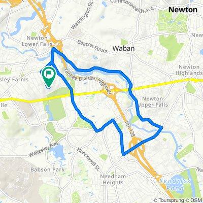 64 Damien Rd, Wellesley Hills to 64 Damien Rd, Wellesley Hills