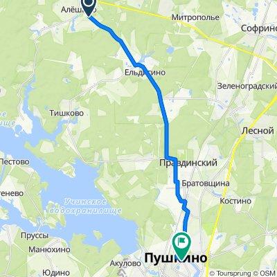 От 46К-8140, Ельдигинское до улица Чехова, 12, Пушкино
