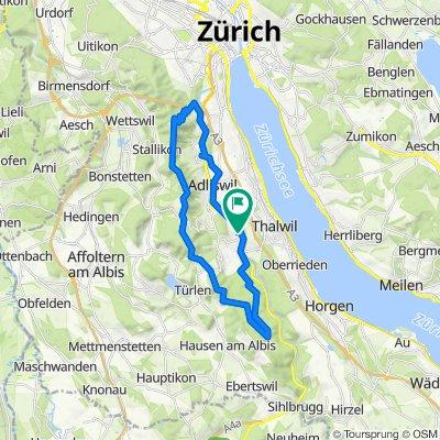 Sihltalstrasse 55, Langnau am Albis nach Breitwiesstrasse 41, Langnau am Albis