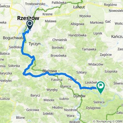 Rzeszów - Dubiecko 1