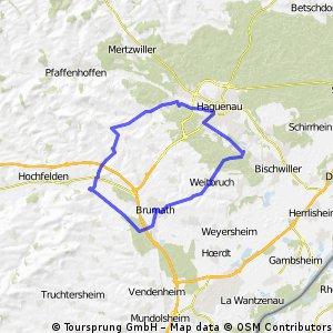 Nordelssass - 3.Tag - Haguenau - Waltenheim-sur-Zorn - Haguenau