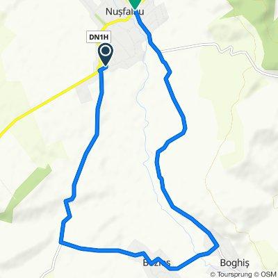 Route to DJ191C, Nusfalau