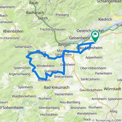 003y Ingelheim - Stromberg - Forsthaus Neupfalz - Wallhausen - Bretzenheim - Ingelheim