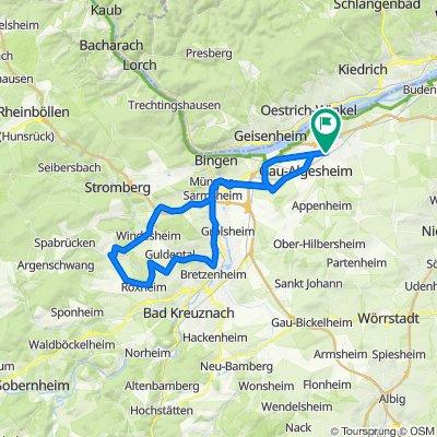 003z Ingelheim - Waldlaubersheim - Wallhausen - Bretzenheim - Ingelheim