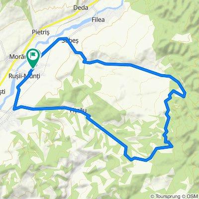 R Munti - Releu - Fitcau 28 km