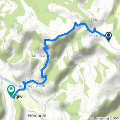 Surmettlen, Trubschachen nach Dorf 507, Eggiwil