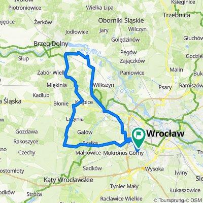 Lutynia - Mrozów - Gosławice - Leśnica v.1