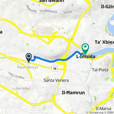Triq Salvu Psaila, Birkirkara to Xatt l-Imsida, Msida