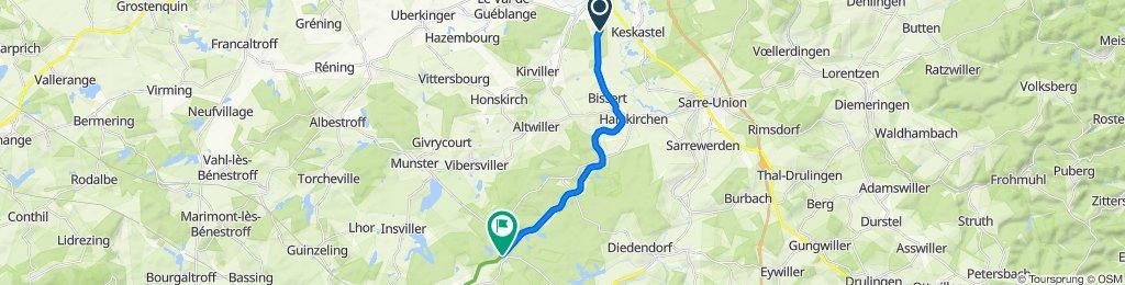 Route nach D39, Vibersviller