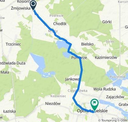 24-313, Wólka Polanowska do Nowy Rynek 5, Opole Lubelskie