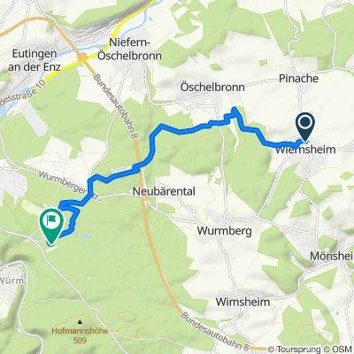 Wiernsheim zum Naturfreundehaus PF 08.08.2020