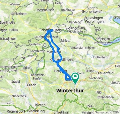 Rheinfall und zurück