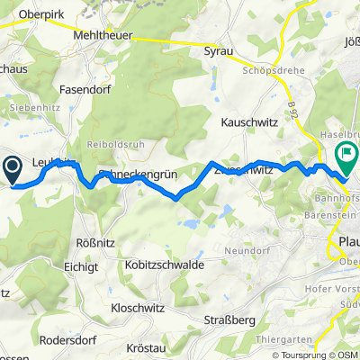 S313, Rosenbach/Vogtland nach Seumestraße 20–32, Plauen