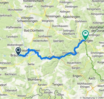 D2a Braunlingen near Donaueshingen to Tuttlingen