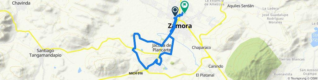 Ruta desde Calle Hermenegildo Galeana N 148, Zamora
