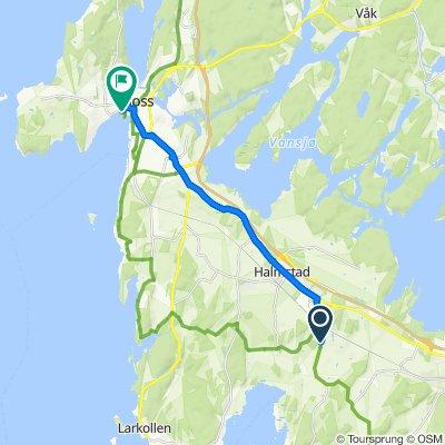 Saltnesveien 518, Rygge to Strandgata 18, Moss