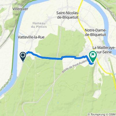 De Route d'Aizier 2210, Vatteville-la-Rue à Le Bourg l'Abbé 363, Arelaune-en-Seine