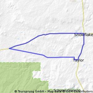 Taylor / HW 277 / Snowflake