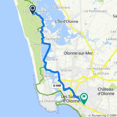 De Chemin de la Grand-Pointe, Olonne-sur-Mer à 96 Rue du Docteur Schweitzer, Les Sables-d'Olonne
