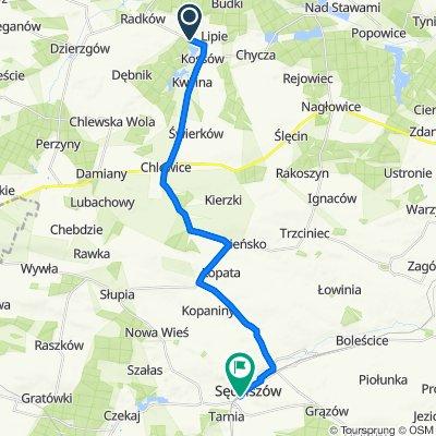 Trasa do Dworcowa 37, Sędziszów