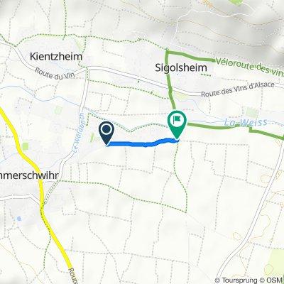 Hochstadenweg, Ammerschwihr to Rue du Vieux Moulin, Sigolsheim