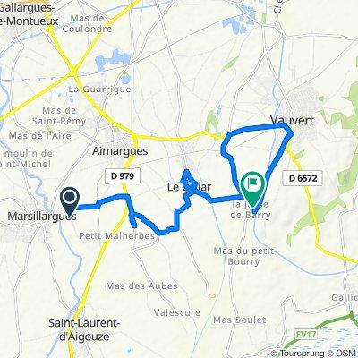 Mas de Bornier, Aimargues nach D352, Le Cailar