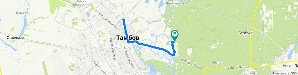 прогулка с Таней