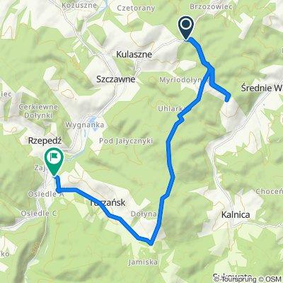 Droga gminna Brzozowiec Czaszyn - Średnie Wielkie do Droga Wojewódzka 892 63, Rzepedź