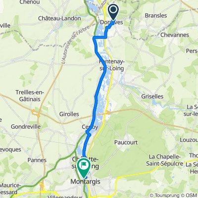 De Route de Bransles, Dordives à Avenue Adolphe Cochery, Montargis