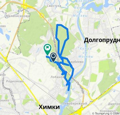 Химки марафон