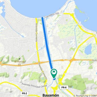 Paseo Linea 8-15-20