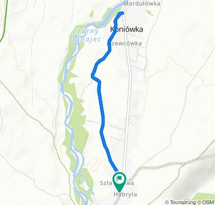 Droga Wojewódzka 958 235, Chochołów do Droga Wojewódzka 958 235, Chochołów