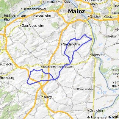 Bodenheim - Armsheim