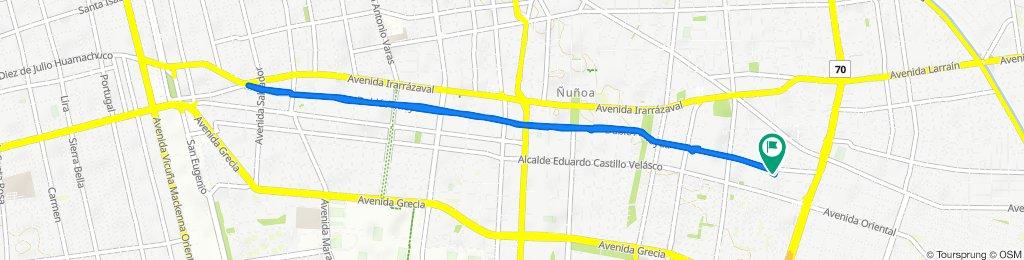 Ciclovía Dublé Almeyda