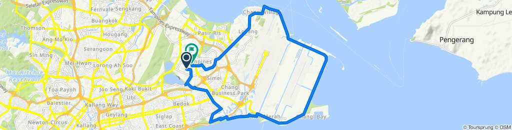 Tampines East to Changi Route