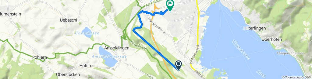 Gwattegg 22A, Gwatt (Thun) nach Drosselweg 7, Thun