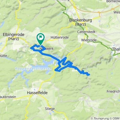 Kreuztal 75, Elbingerode (Harz) nach Kreuztal 75, Elbingerode (Harz)