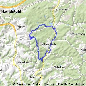 MTBPark Pfälzerwald: Vom Gelterswoog zur Queidersbach Runde der Tour 3