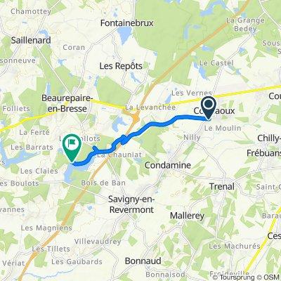 Itinéraire à partir de 409 Route de Nilly, Courlaoux