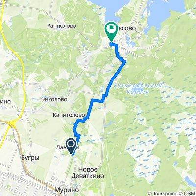 41К-305, 12–14, Murinskoye to Железнодорожная улица, 8, Toksovo