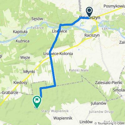 Ożegowska, Działoszyn do Unnamed Road