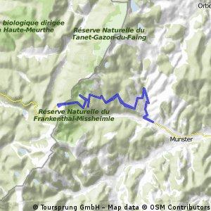 Stef@ns Tour zur Tour 2005 Etappe 3 Teil 1 am 09.07.05