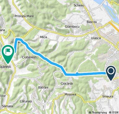 pitesti babana +retur 25km