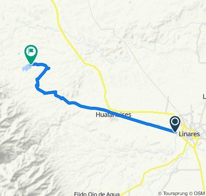 Ruta desde Camino a Hualahuises, Linares