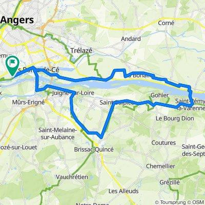 Rue du Champ Pichard 2, Sainte-Gemmes-sur-Loire naar Place de la Mairie 21, Sainte-Gemmes-sur-Loire