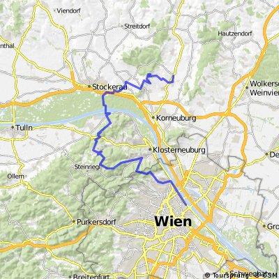 Wienerwald Unterholz