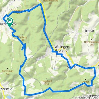 An der Eiche über Hochheide zur Graf Stollberghütte über Willingen zurück