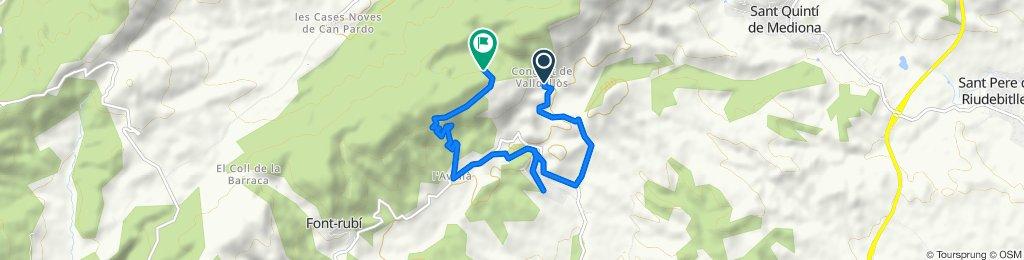 Ruta desde Camino de Sant Joan de Mediona, Mediona