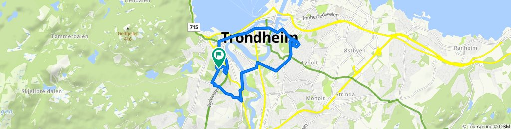 Trondheim Cycling