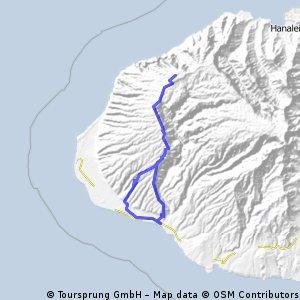 06-01-2011-Waimea Canyon Road